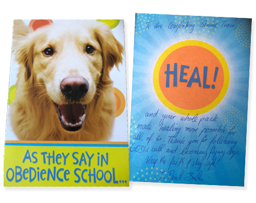 smiling golden retriever card after deployment to santa fe texas