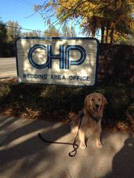 Police ministry dog serving highway patrol after carr fire