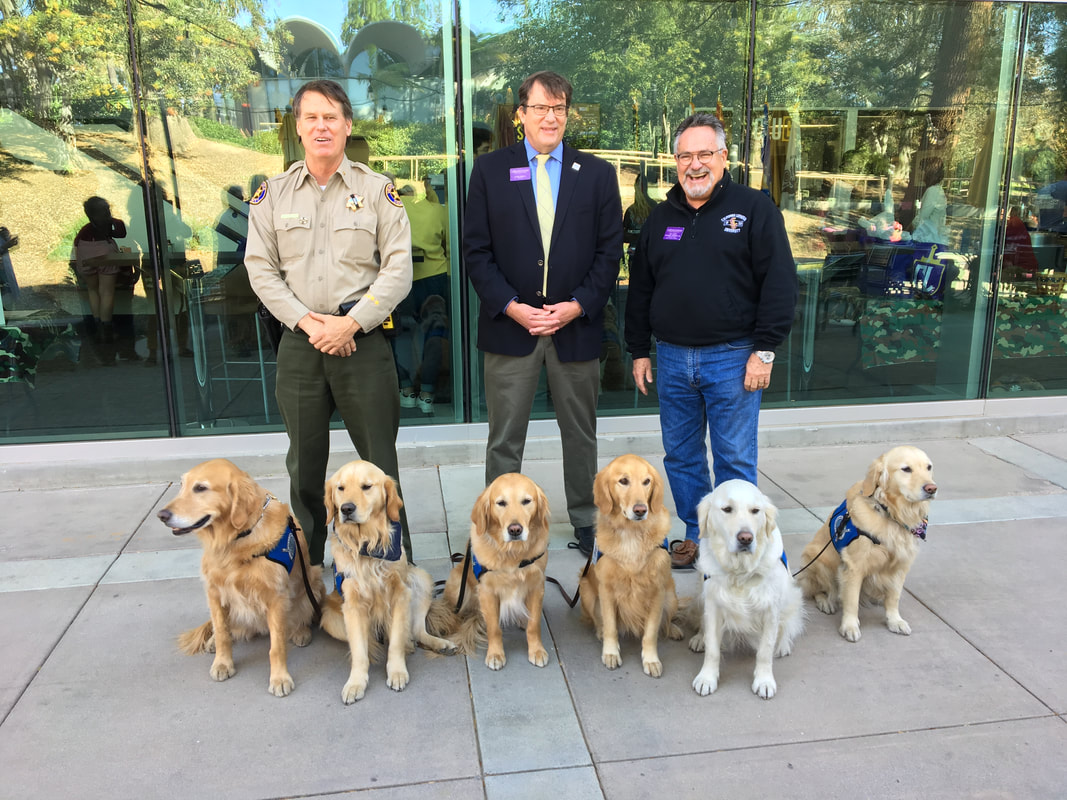 Sheriff with Comfort Dog Golden Retrievers